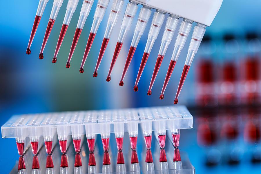 кровь методом ПЦР